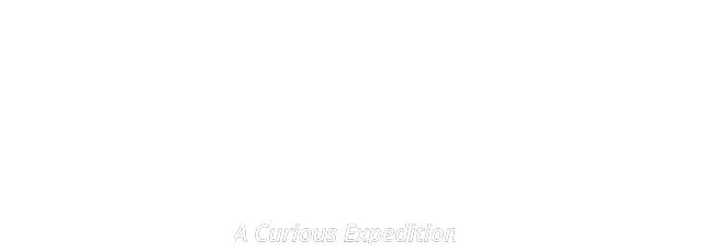 Michael Storm Logo